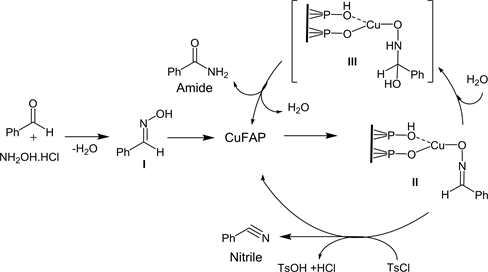 Facile Synthesis of Nitriles and Amides from Aldehyde over