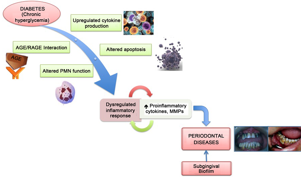 Diabetes and Periodontal Diseases: An Established Two-Way Relationship