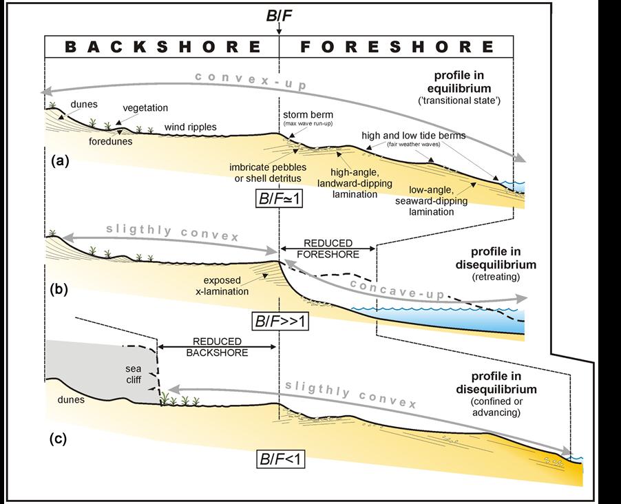 11 1470173x11 short term assessment of retreating vs advancing microtidal beaches