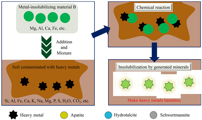 Remediation of Heavy Metals Polluted Soil Using Metal Insolubilizing