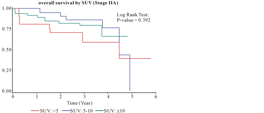 Prognostic Significance of Standardized Uptake Value of PET Scan in