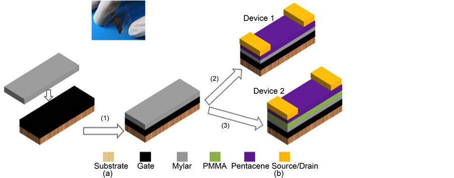 Electrical Instability in Pentacene Transistors with Mylar and PMMA
