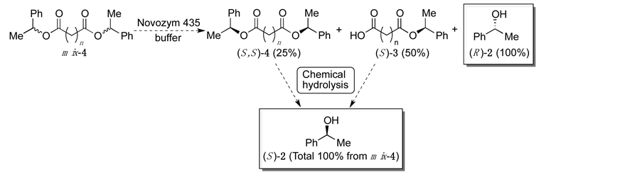 theoretical reaction of the enzyme-mediated enantioselective hydrolysis of  racemic dicarboxylic acid diesters 4 (the numbers in parentheses are the